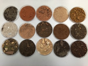 All the different colours of the soil samples.